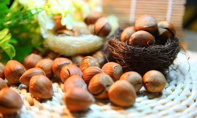 Argan Oil Benefits For Hair and Skin